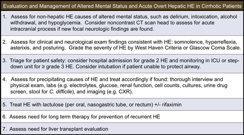 How To Diagnose Hepatic Encephalopathy